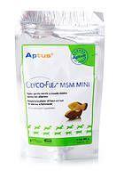 Aptus Glyco-Flex MSM Mini purutabl 60 kpl